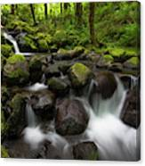 Ruckel Creek  Oregon, United States Canvas Print
