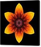Rudbeckia I Flower Mandala Canvas Print