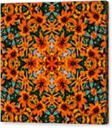 Rudi 2 Kaleidoscope Canvas Print