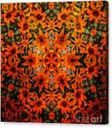Rudi 2 Texture Canvas Print