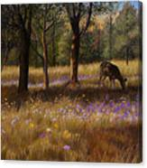 Ruidoso Morning Canvas Print