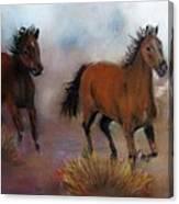 Run Wild Run Free Canvas Print