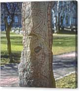 Runestone Canvas Print