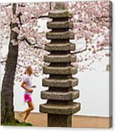 Running By The Tidal Basin Canvas Print