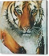 Running Tiger Canvas Print
