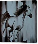 Running Wild Canvas Print