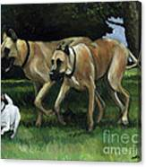 Running With The Big Boys Canvas Print
