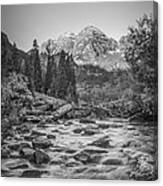 Runoff  Bw Canvas Print