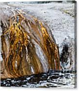 Runoff From Geyser Canvas Print