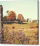 Rural Country Scene Canvas Print