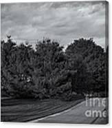 Rural Road 52 Canvas Print