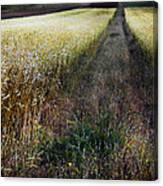 Ruralscape #1 Canvas Print
