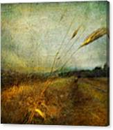 Ruralscape #19. The Victory Of Silence Canvas Print