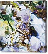 Rushing Brook Canvas Print