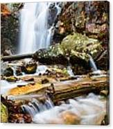 Rushing Falls Canvas Print