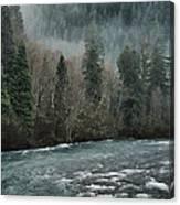 Rushing Mckenzie River Canvas Print