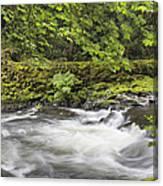 Rushing Water At Cedar Creek Washington State Canvas Print