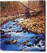 Russell River Canvas Print