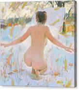 Russian Sauna IIi  Canvas Print