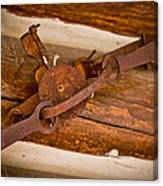 Rust Trapped On A Log - Old Trap - Casper Wyoming Canvas Print