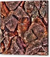 Rusted Bolt In The Rocks Canvas Print