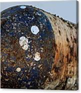 Rusted Buoy Canvas Print