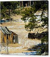 Rustic Cabin In The Pines Canvas Print