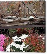 Rustic Fall Canvas Print