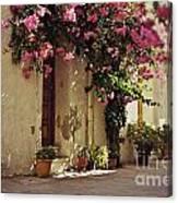 Rustic Greek Townhouse Canvas Print
