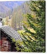 Rustic House And Tree Canvas Print