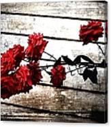 Rustic Rose Canvas Print
