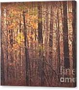 Rustic Winter Glow Canvas Print