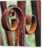 Rusty Curls Canvas Print