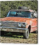 Rusty Impala Canvas Print