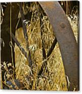 Rusty Old Wheel And Yellow Grasses Canvas Print