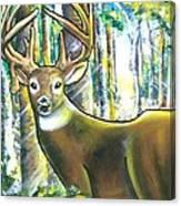 Rut Canvas Print