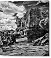 Sabellariid Worms Reef - 3  Canvas Print