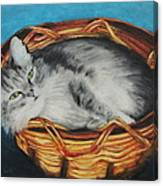 Sabrina In Her Basket Canvas Print