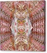 Sacred Eyes Of Joy Canvas Print