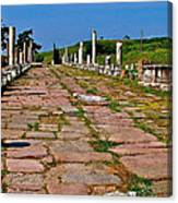 Sacred Road To Asclepion In Pergamum-turkey  Canvas Print