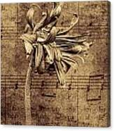 Sad Song In Sepia Canvas Print