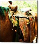 Saddle Canvas Print