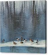 Safehaven   Indiana   Winter Canvas Print