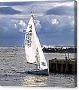 Safely Back To Harbour Canvas Print