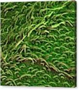 Sage Leaf Canvas Print