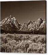 Sagebrush And Tetons Canvas Print