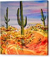 Saguaro Cactus Desert Landscape Canvas Print