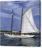 Sailboat In Cape May Channel Canvas Print