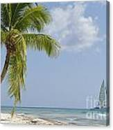 Sailboat Passing By Tropical Beach Canvas Print