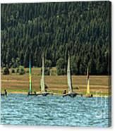 Sailboat Regatta Cascade Lake Canvas Print